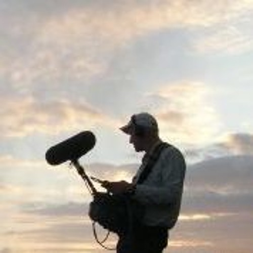 Free field recordings's avatar
