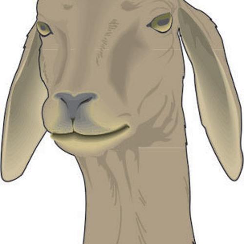 schlagschattenschwarz's avatar