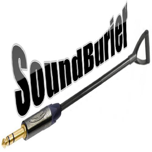 SoundBurier's avatar