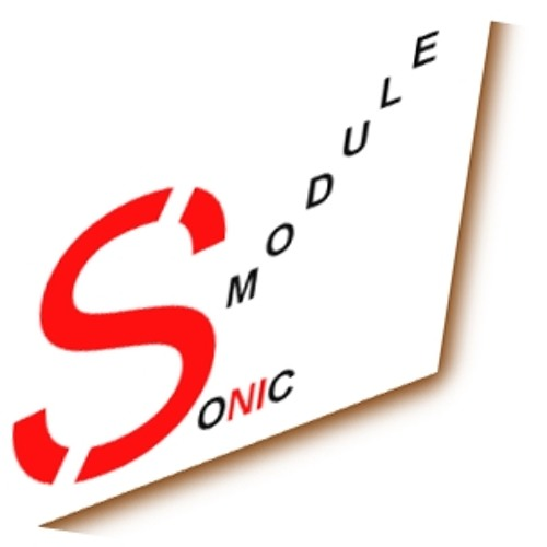 Sonic Module's avatar