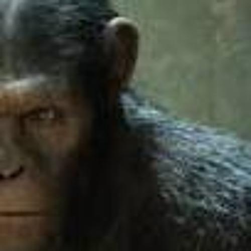 hully-1's avatar