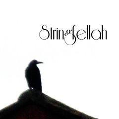Stringfellah