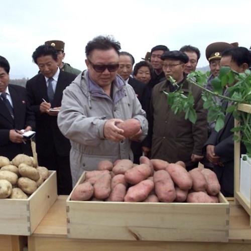 DPRK.'s avatar