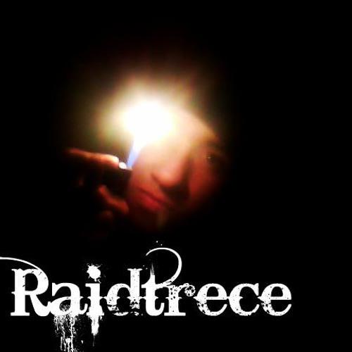 raidtrece's avatar