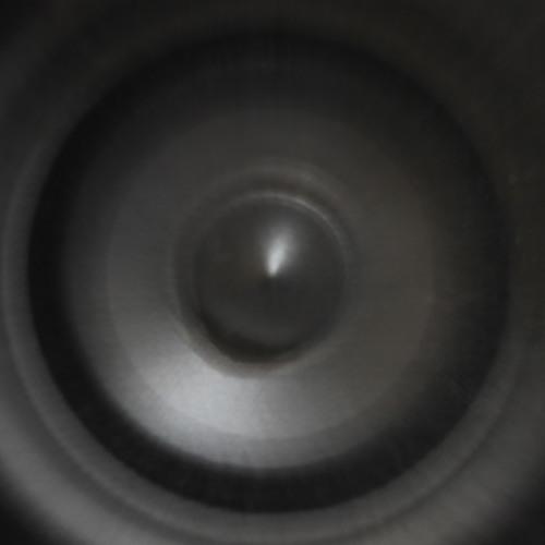 The Dub Sounds's avatar
