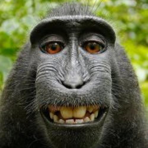 Azalea5560's avatar