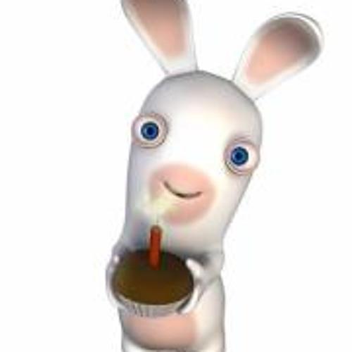Sylvain Thierry's avatar