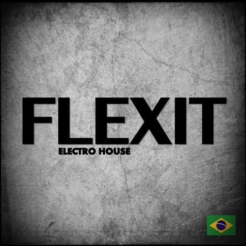 FLEXIT's avatar
