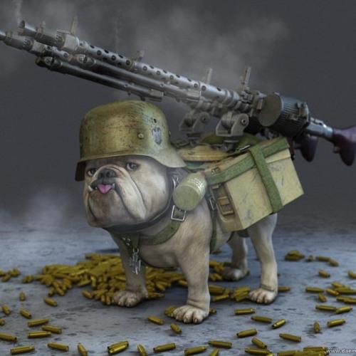 BulletDogg Productions's avatar