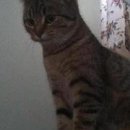 Kat Drexler's avatar