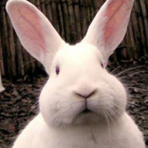 Bunny Yavuu's avatar