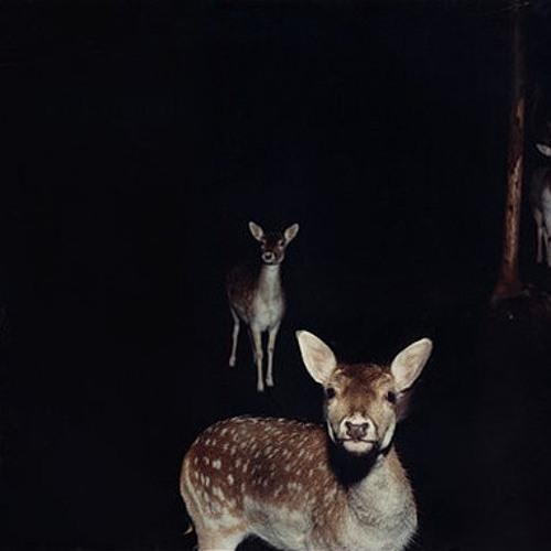 Dakograff's avatar