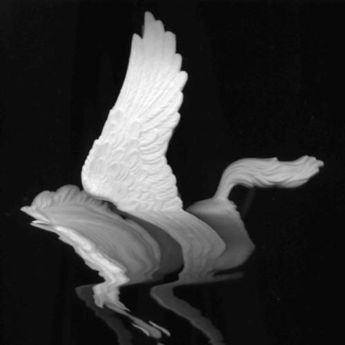 Angelhorse's avatar