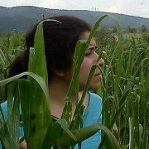 Bruna Mata Cavassani's avatar