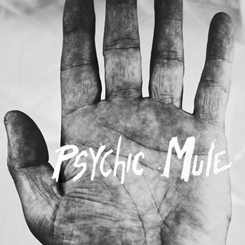 Psychic Mule Records's avatar