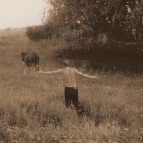 Danny_boy_Shevtsov's avatar