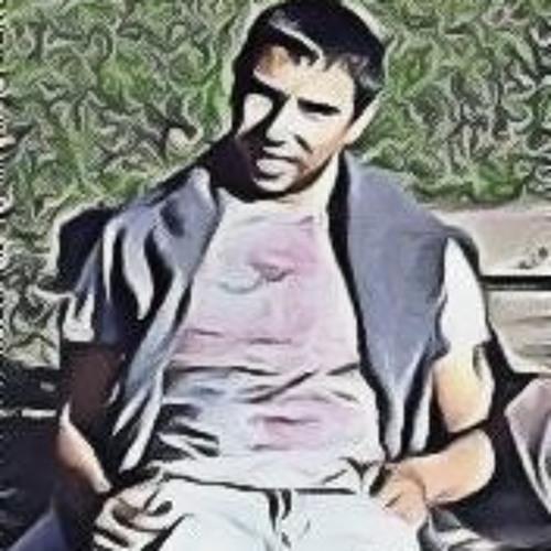 Alexsandar Hristev's avatar