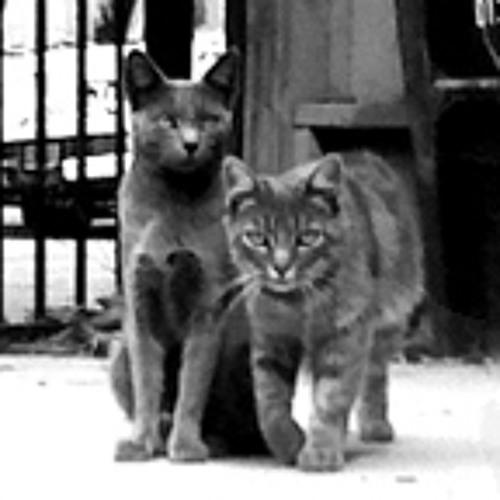 hoodcats's avatar