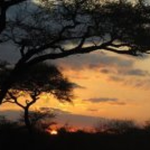 Gaopalelwe Basimolodi's avatar