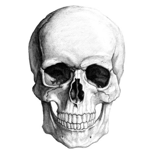 ke5tnu's avatar