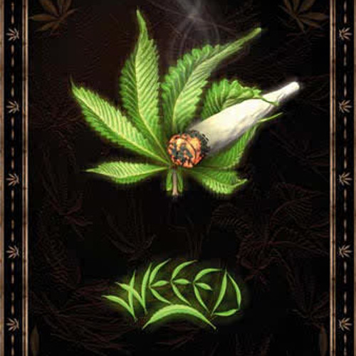 reggae vibe's avatar
