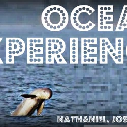 The Ocean Experience's avatar