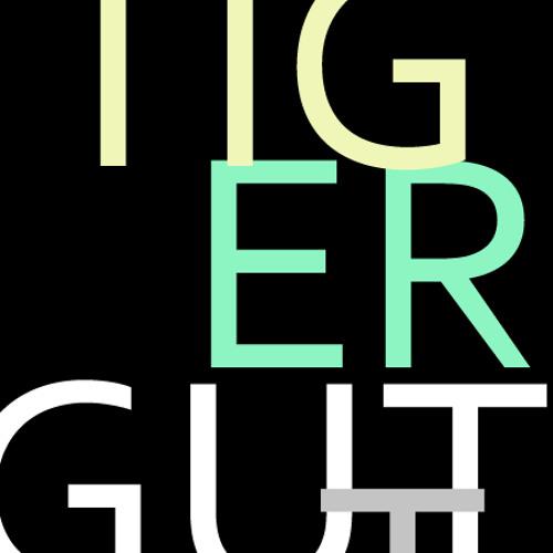 dj tigergutt's avatar