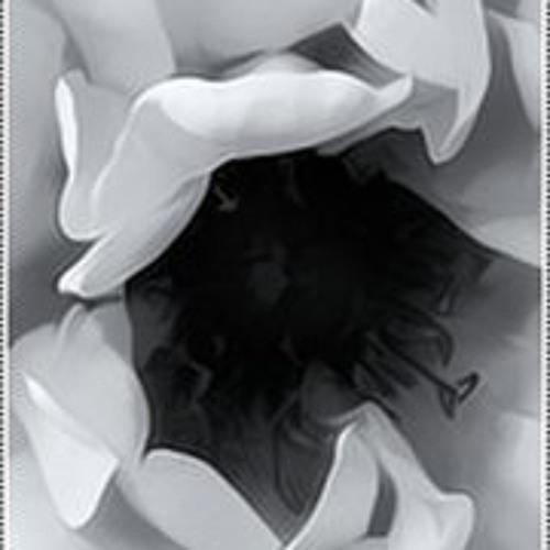 QǺmar Ǻļ Źman's avatar