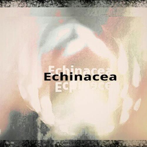 Echinacea *'s avatar