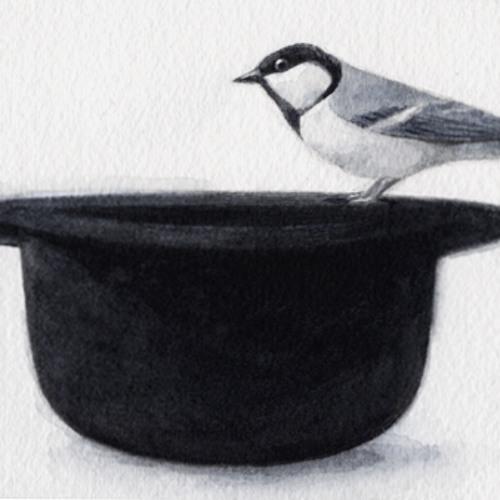 iabadabadoo's avatar