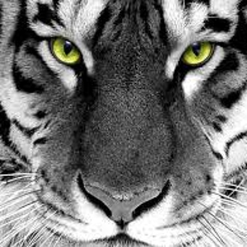 Manos_Gr's avatar
