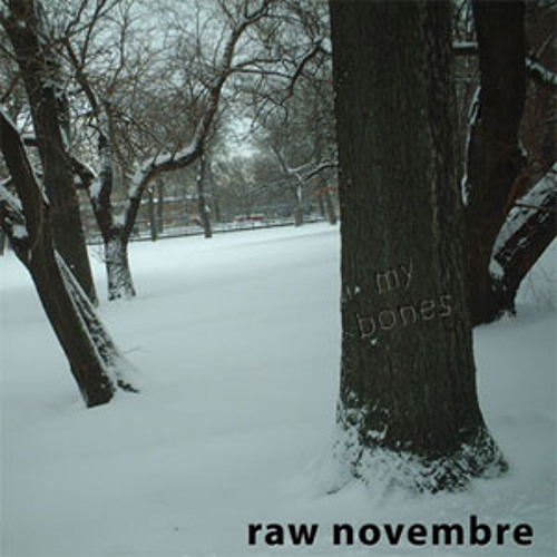 rawnovembre's avatar