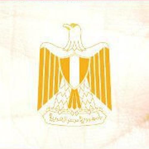 Mohamed Abd Elrahman's avatar
