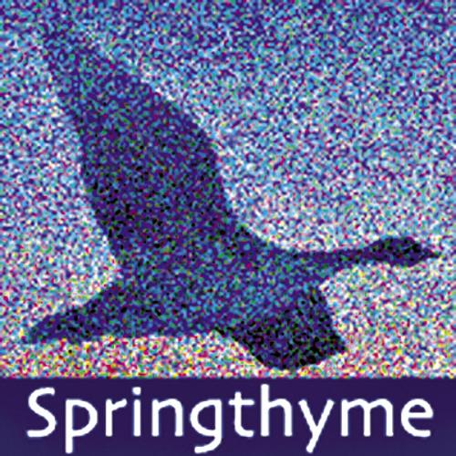 springthyme's avatar