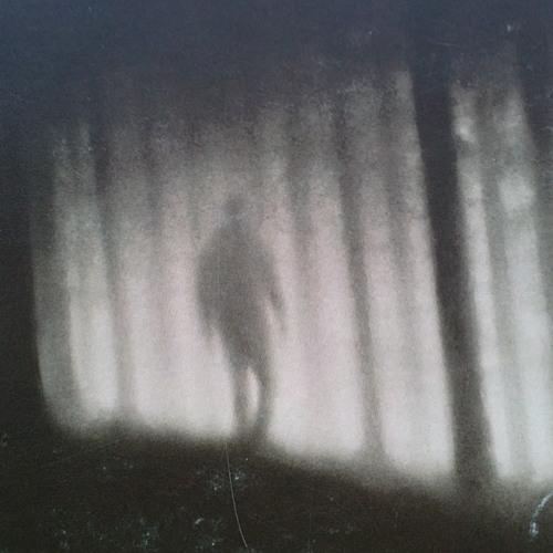phantohms's avatar