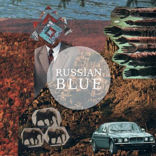 russianblueuk's avatar