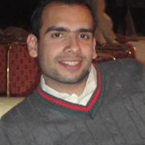 Ali Shahid Pansota's avatar