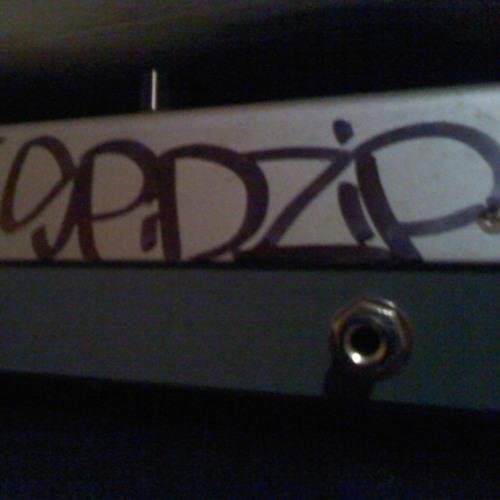 Dj SpidZip's avatar