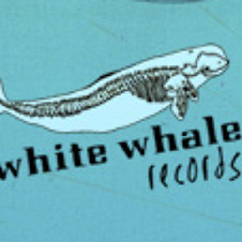 White Whale Records's avatar