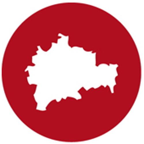 berlinfolgen's avatar