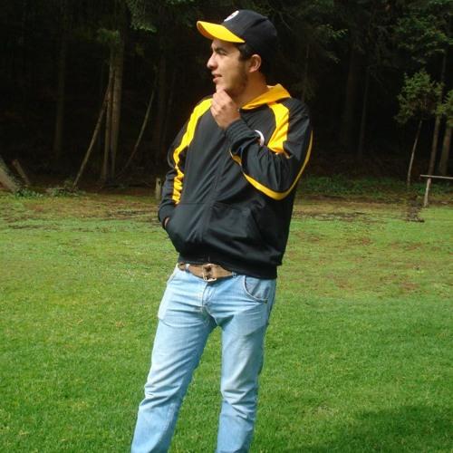 Raúl Anaya's avatar
