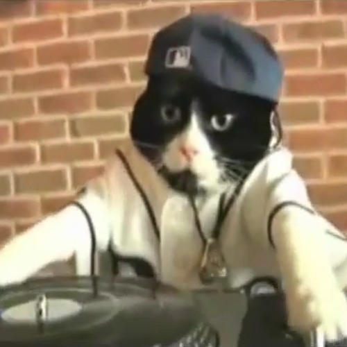 DJ Feral Cat's avatar