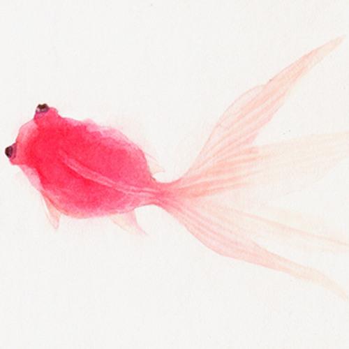 kelsiandthedeadfish's avatar