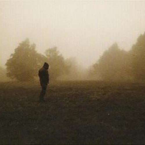 Woods of Desolation's avatar