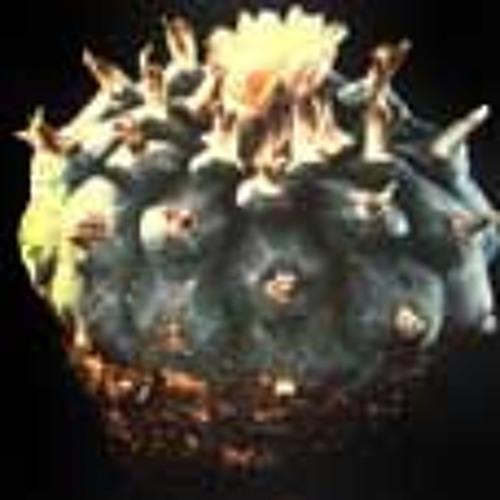 djpeyote's avatar