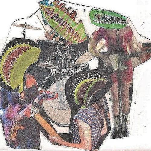 The flytraps's avatar