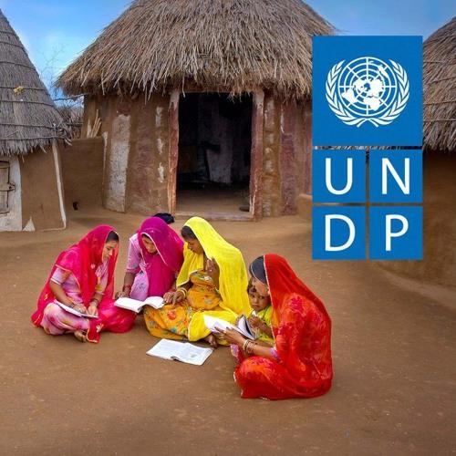 UNDP's avatar