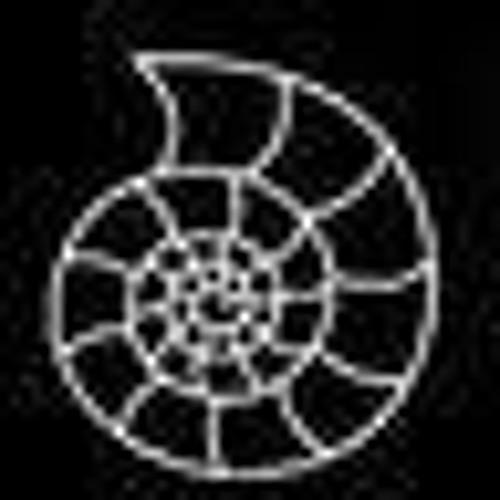 ammonite_records's avatar