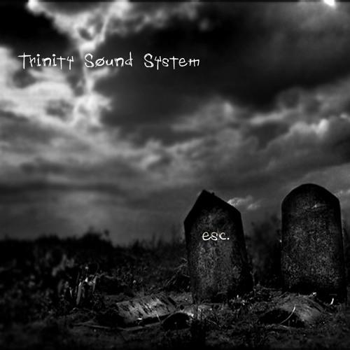 Trinity Sound System's avatar