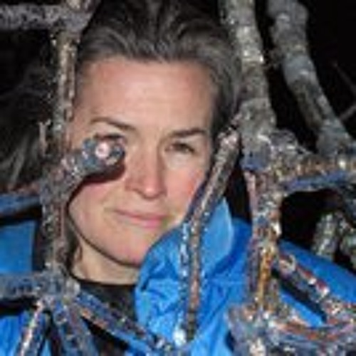 Maureen Reardon's avatar